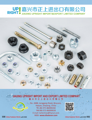 Hexagon Nuts/Lug Nuts/Cap Nuts/Flange Nuts/Nylon Insert Nuts/Tee Or T Nuts/Blind Nuts / Rivet Nuts