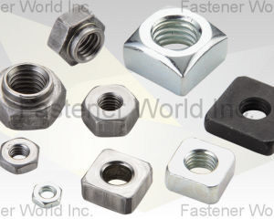 Square Nut(FONG WUNS CO., LTD. )